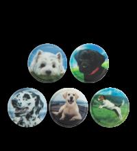 ergobag matrica készlet Dogs