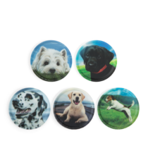 Dogs ergobag matricák-Kletties, 5 darabos készlet, kutyás