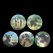 ergobag  Matrica készlet Zoobabies